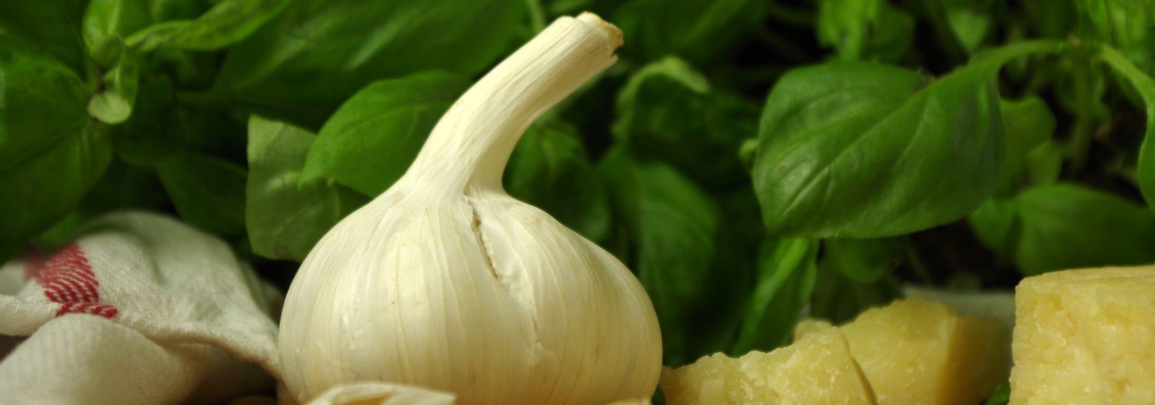 Aglio, parmigiano e basilico di Pra' DOP: gli ingredienti tradizionali del pesto