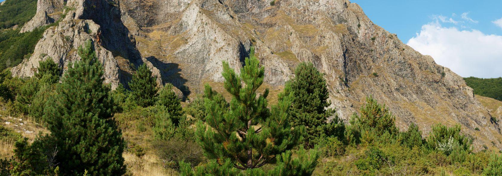 Alta Via monte Groppo Rosso foto E.Monaci