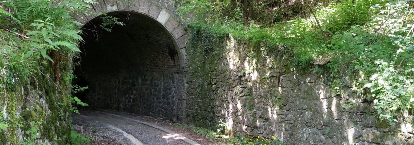 Antica Guidovia