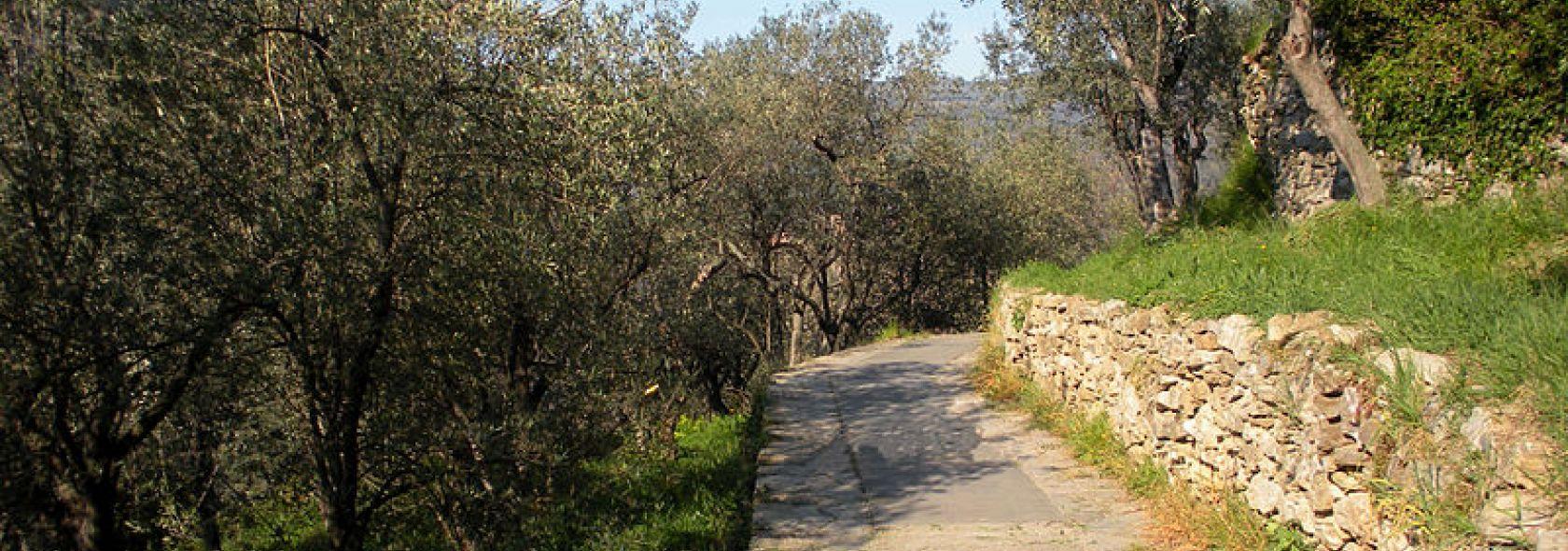 Acquedotto storico Foto © Wikimedia.org CC 3.0.