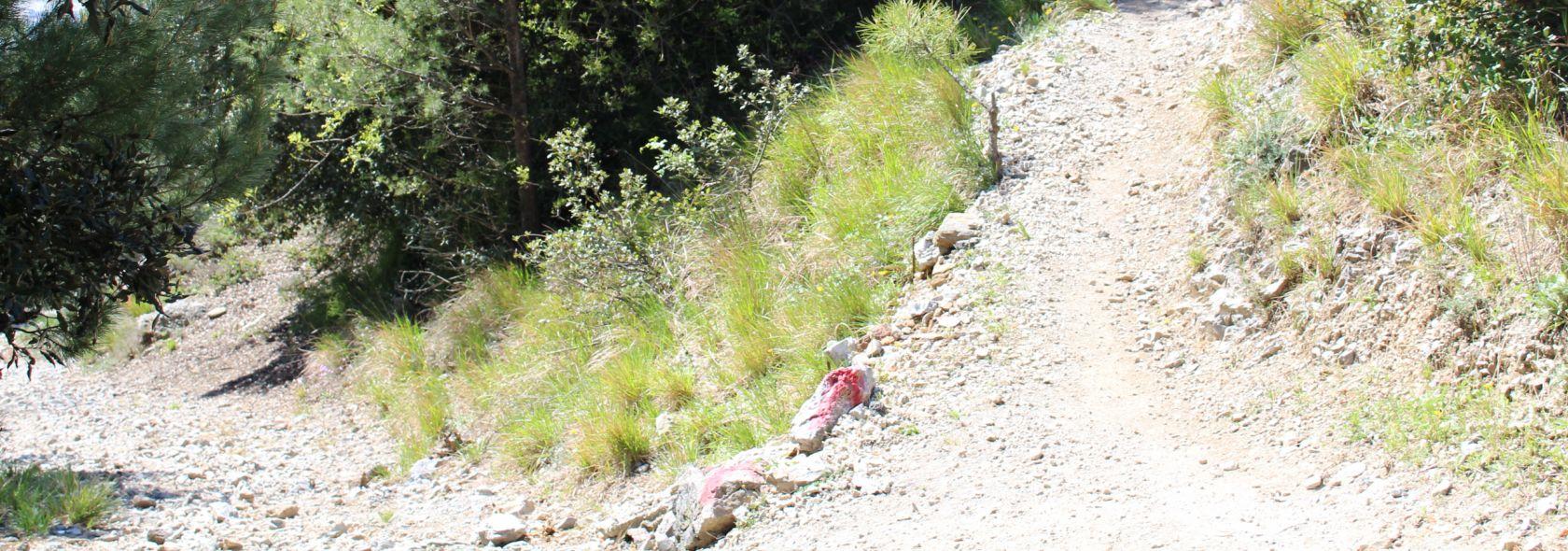 Monte Gazzo Outdoor - escursioni guidate con e-bike
