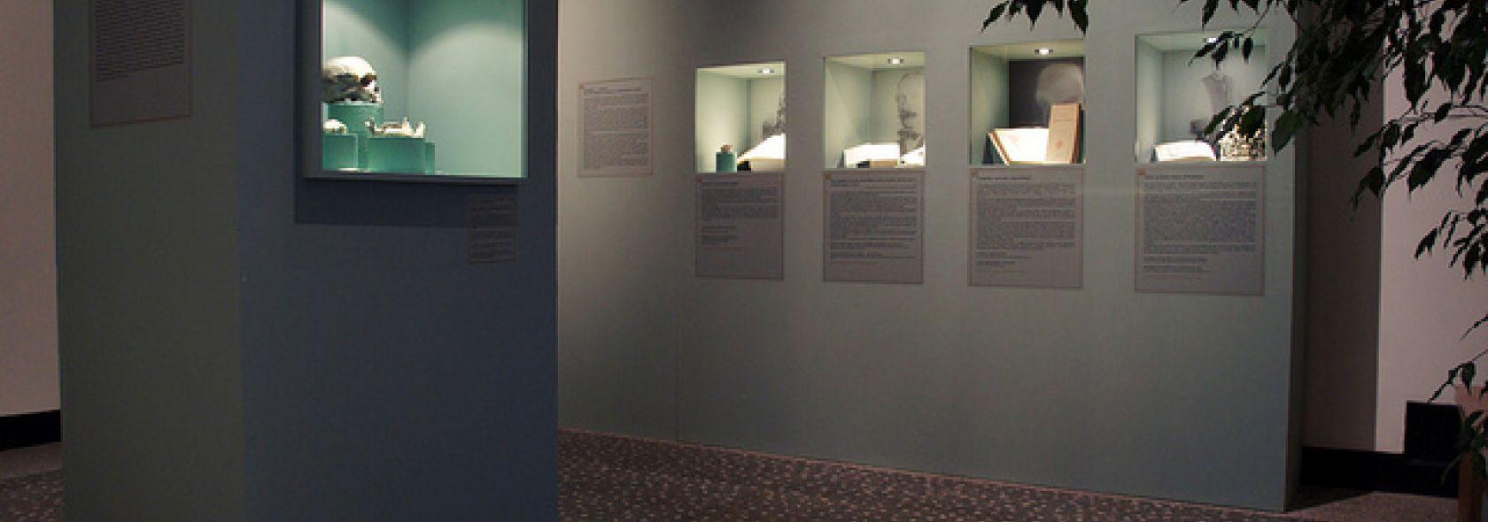 Museo di Archeologia Ligure - interno - foto: Rinaldi - ©genovacittadigitale