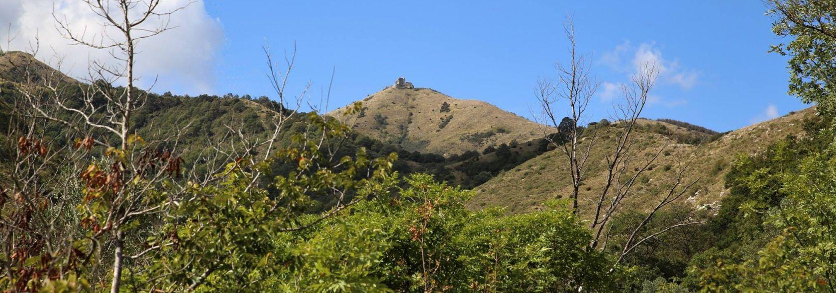 Valle Cicala Forte Diamante