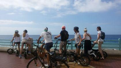 Treecycle - E-Bike