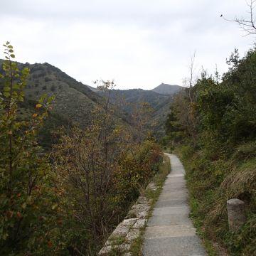 Valle Cicala