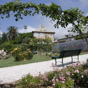 The rose garden of the Parks of Nervi