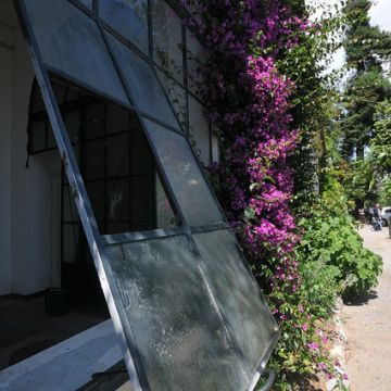 Orto botanico Corso Dogali (Università) - Goggi - ©genovacittadigitale