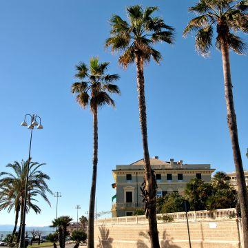 Corso Italia - foto: G.Camilla Severino