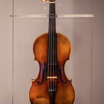 """Palazzo Tursi, Sala Paganini - Il violino Guarnieri del Gesù detto """"Il Cannone"""""""