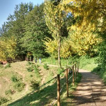 sentieri Antola archivio Parco Antola