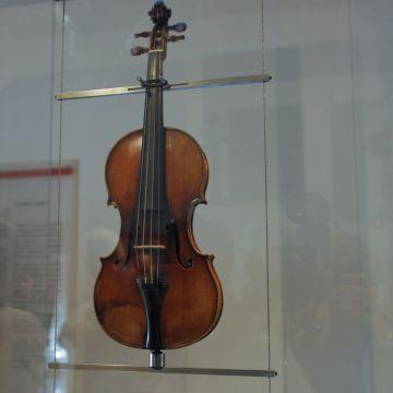 """Le violon du Guarneri del Gesù di """"Il Cannone"""" - Palazzo Tursi Sala Paganini - f"""